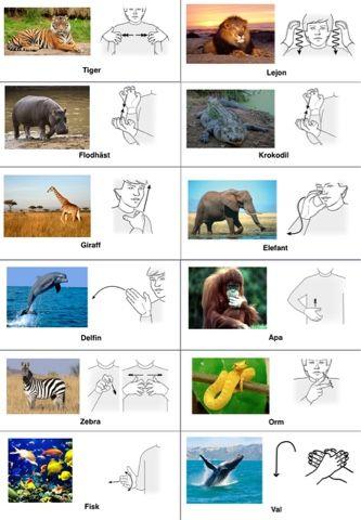 Vilda djur (Tecken som stöd)