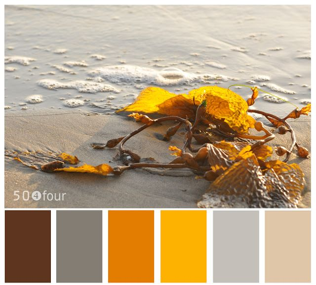 color palette - brown, gray, orange, yellow this is the scheme for our bedroom already :)