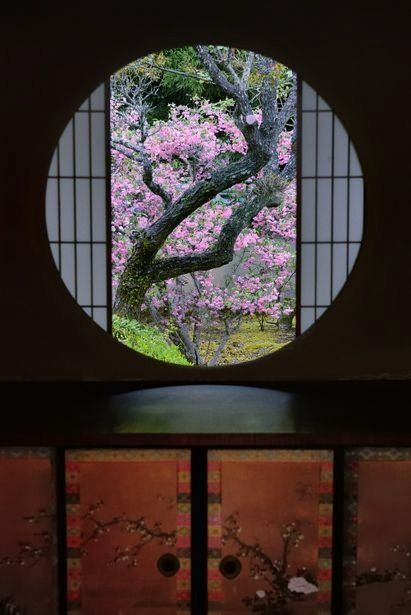 A window of Enlightenment at Unryu-in temple, Kyoto, Japan. Photography by McKee on ganref.