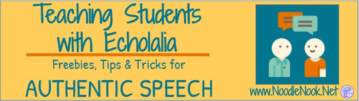 Teaching Students with Echolalia - NoodleNook.Net