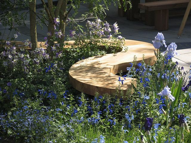 Curving wooden garden bench