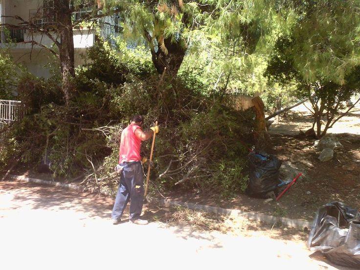 Καθαρισμός Χώρων 6932754198   - www.hortokoptiki.gr