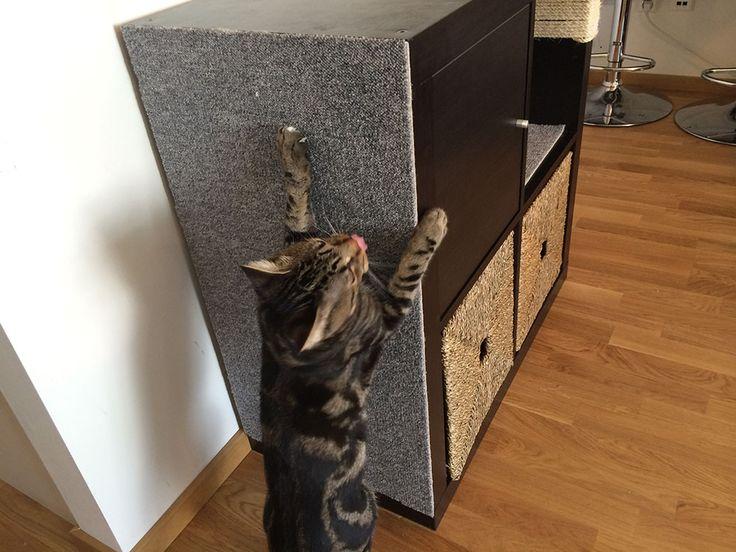 Kallax cat scratching furniture - IKEA Hackers - IKEA Hackers