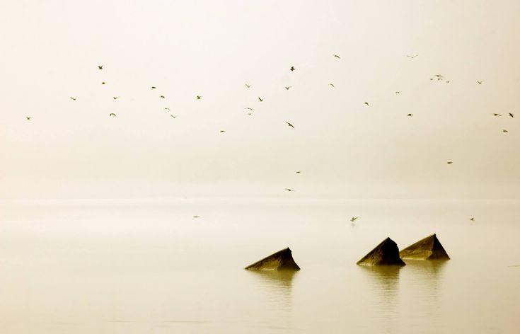 Guida per diventare un maestro della fotografia minimalista | Reflex-Mania