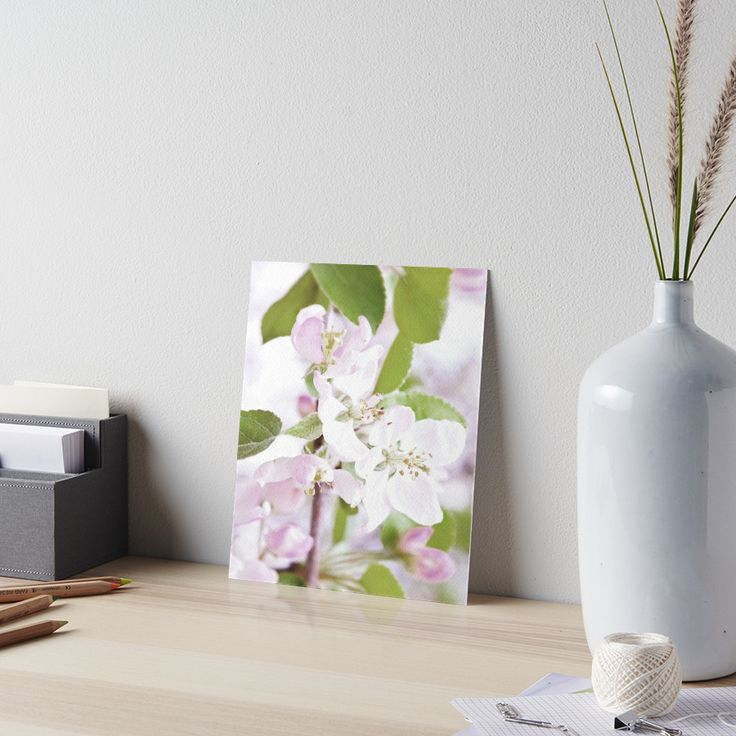 Apple Tree Blossoms Art Board by ARTbyJWP from Redbubble #artboard #walldeco #artprints #buyart #floral #blossoms --   Also buy this artwork on phone cases, apparel, stickers, and more. buy this artwork on wall prints, apparel, stickers, and more.