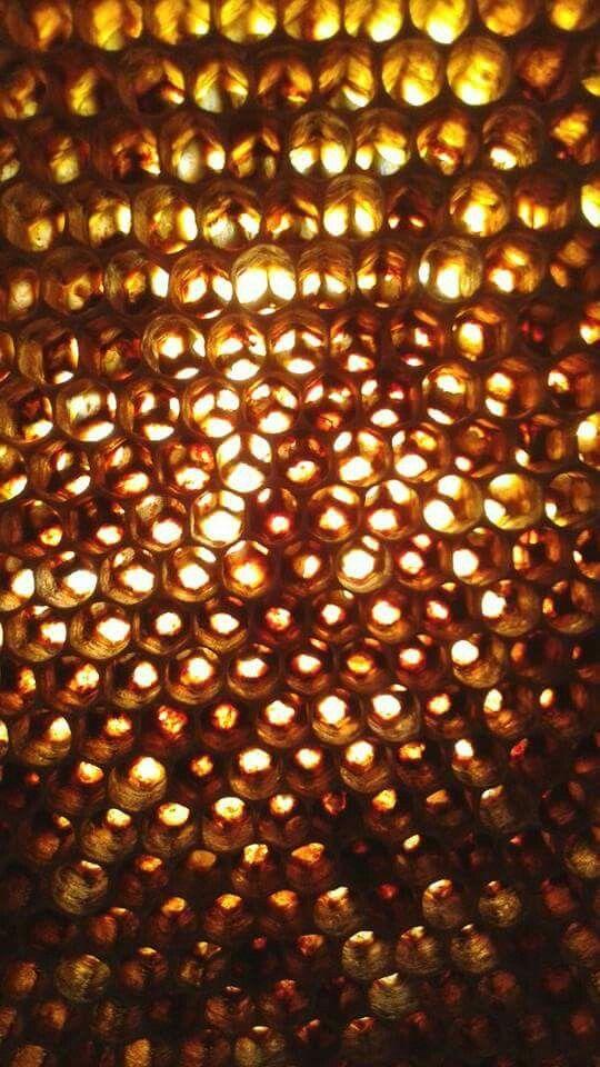Honungs glitter