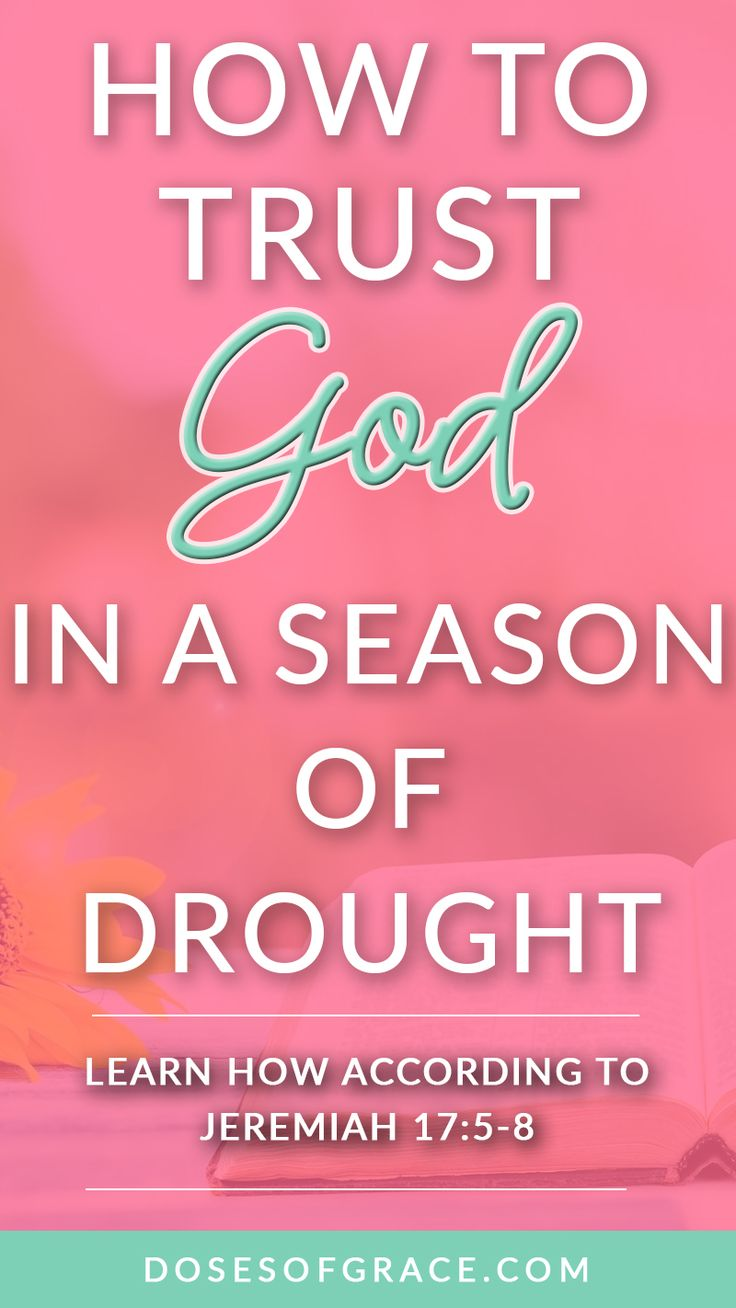 How to trust God in a season of drought | trusting God | Jeremiah 17:5-8 | Blog posts for Christian women | devotionals for women | Scriptures on trusting God | bible verse | #scripture #christianity