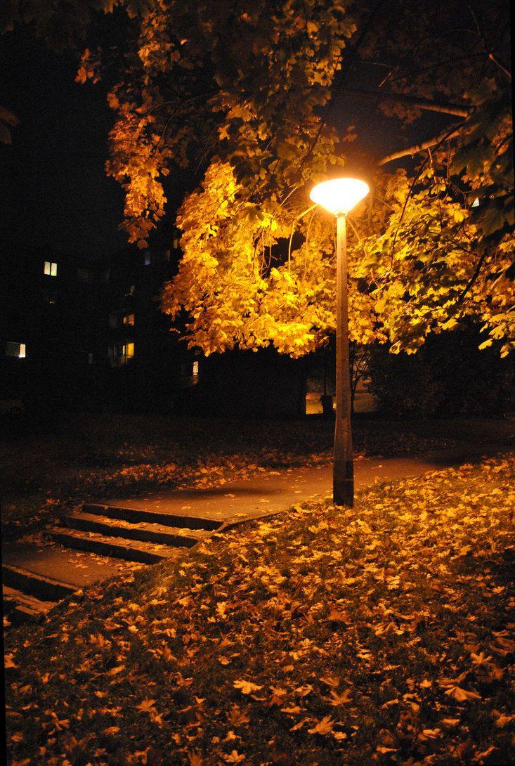 Autumn Night By Dudykaa On Deviantart A Little