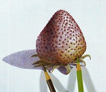 Learn to draw Strawberry with color pencil