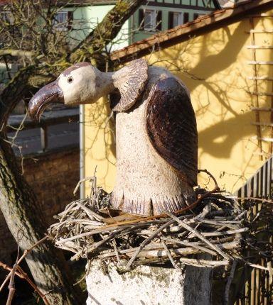 Der Storch ist in der Wärme, jetzt sitzt ein Geier in seinem Nest