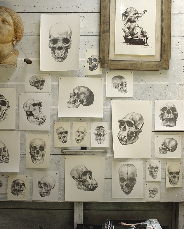 Neat idea for October wall. David Bromley