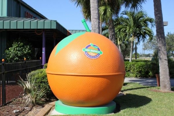 MustDo.com | Visit Sun Harvest Citrus for fresh Florida oranges, grapefruit, gifts and treats. Fort Myers, FL