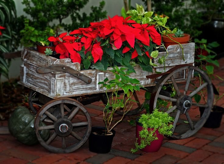 14 Rustic Garden Wagon Ideas For A Country Garden - Page 2 of 2 - Garden Lovers Club