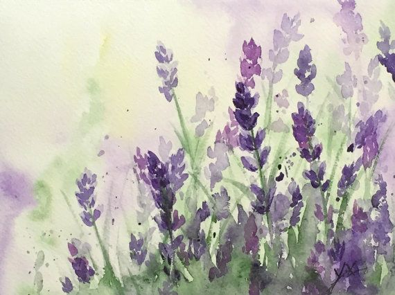 Original Watercolor Lavender Original by ColorOfChlorophyll