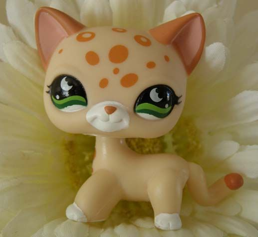 LPs Cat | LPS kitty cat! I am getting this cat.