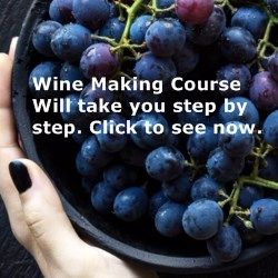 Making Wine From Home Tips | Wine Making HQ