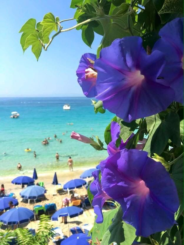 ***Kefalonia, Makris Gialos Beach!! ❤❤ @marian abel ***