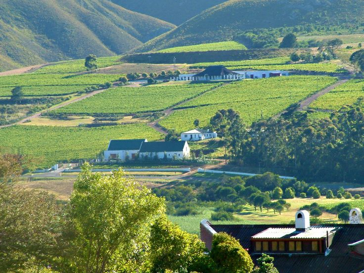 A landscape scene in the Hemel & Aarde Valley, Hermanus, South Africa.