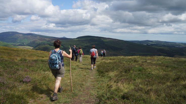 enjoying the amazing views of County #Wicklow #caminofestirl #walking #Ireland