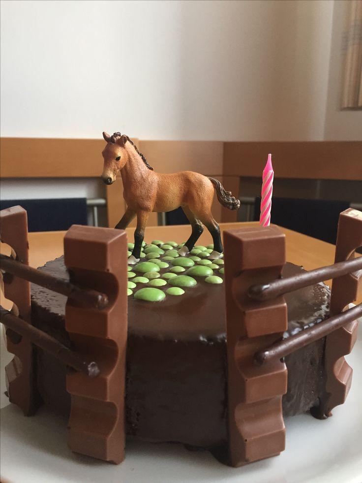 Geburtstag Pferde Party Kuchen mit Zaun
