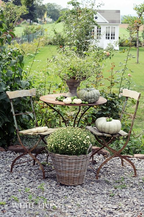A beautiful spot in the garden. Garden still life. And I love the garden retreat in the background!