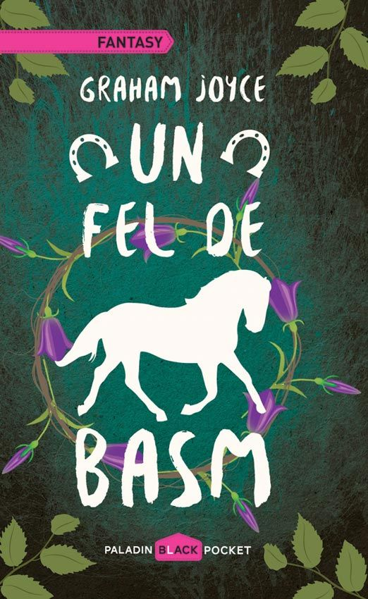 PALADIN 28-Graham Joyce - Un fel de basm (Some Kind of Fairy Tale), 2015, traducere Alexandra Fusoi