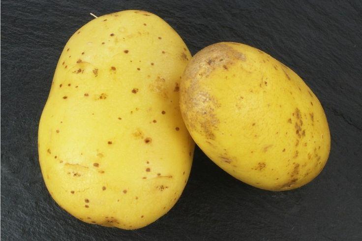 Come conservare le patate: tutti i trucchi