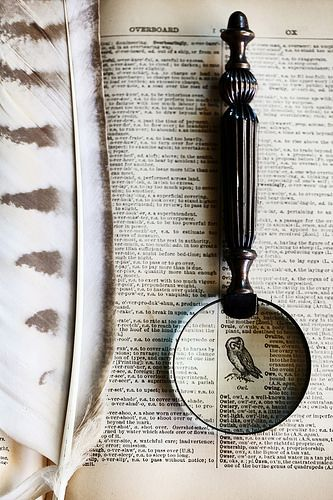 dictionary, feather and magnifying glass by -barbara carroll- #flickstackr  Flickr: http://flic.kr/p/rzcc2m