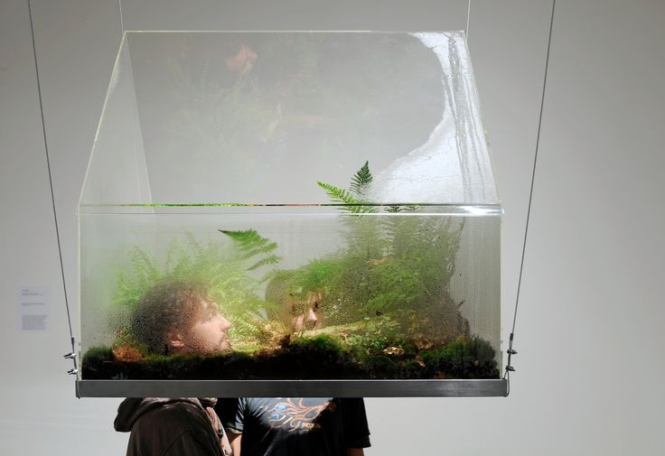 One Big House , 2009 ( photos: Franz Waeuhof) Commissioned by the Edith Russ Site for New Media Art in Oldenburg, Germany acrylic, hardware, plants, soil, organic matter, water, and water sprayer...