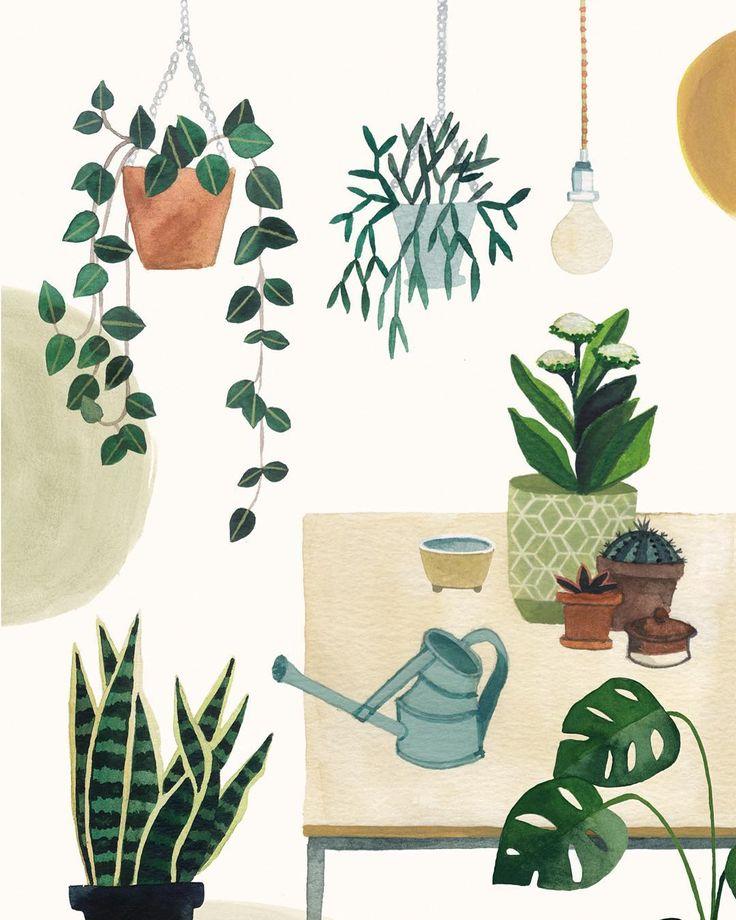Valesca van Waveren. Plants illustration