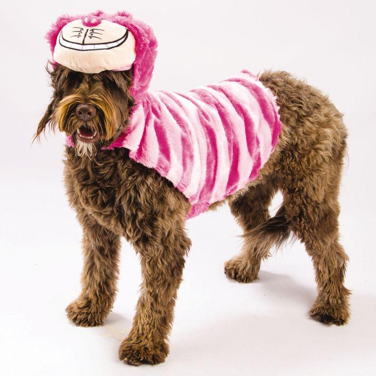 Best 25+ Cheshire cat costume ideas on Pinterest ...