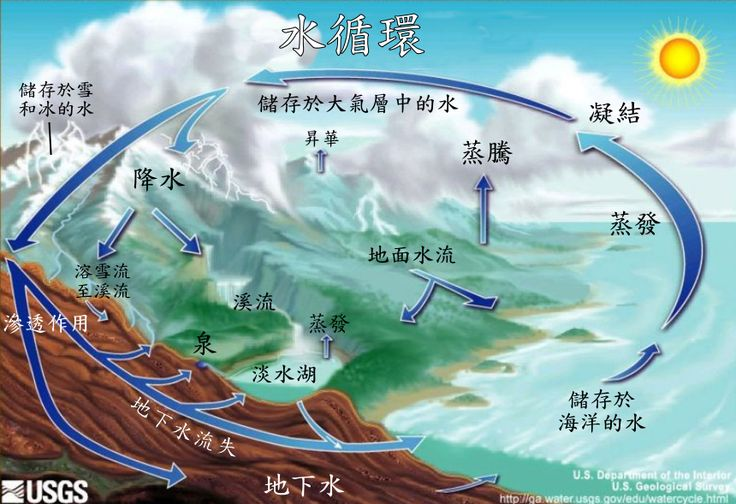 Water_cycle_zh.png (860×589)