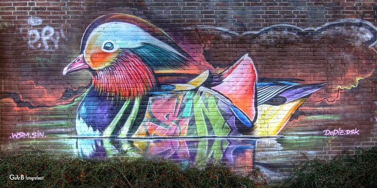 https://flic.kr/p/RhrMSM | colorful bird