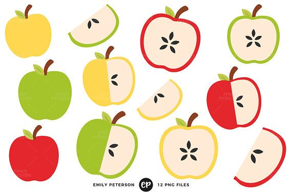 Apples Clip Art Apple Slice Clipart Fruit Clip Art Etsy Apple Clip Art Clip Art Illustration