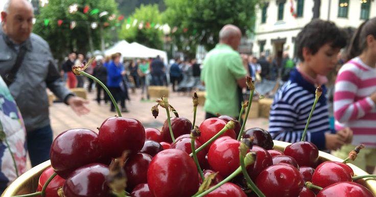 El Regato celebra este 3 de junio su Fiesta de la Cereza que incorpora romería