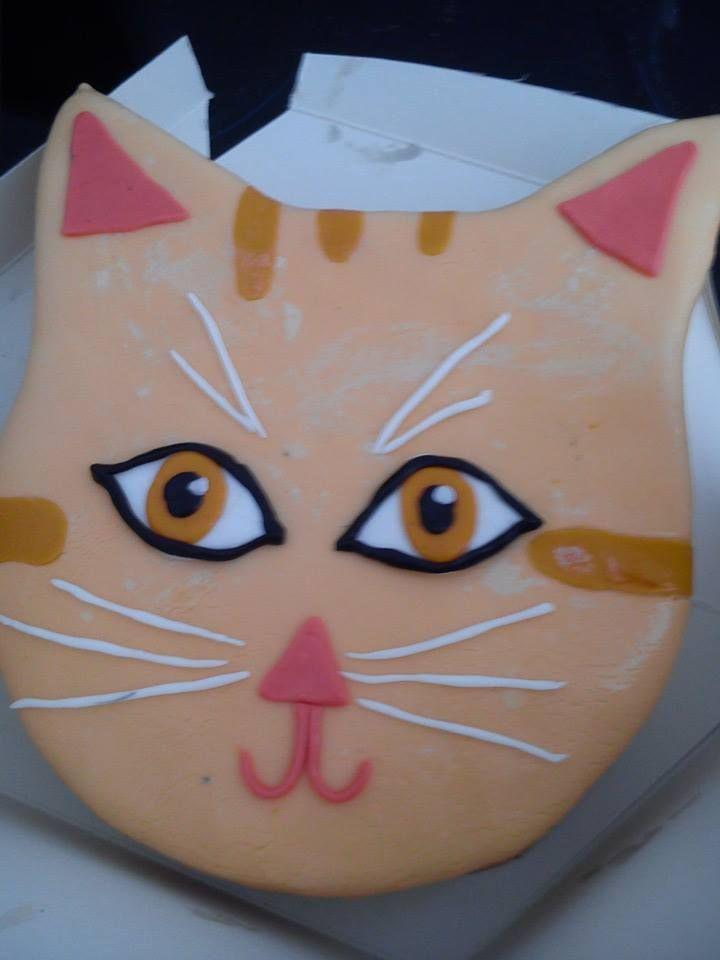 Tarta de gato vegana, especial para un regalo. Si quieres tu algo especial dinoslo y te lo hacemos personalizado!!