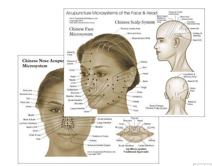 les 37 meilleures images propos de acupunture visage sur pinterest r flexologie yeux et cercles. Black Bedroom Furniture Sets. Home Design Ideas