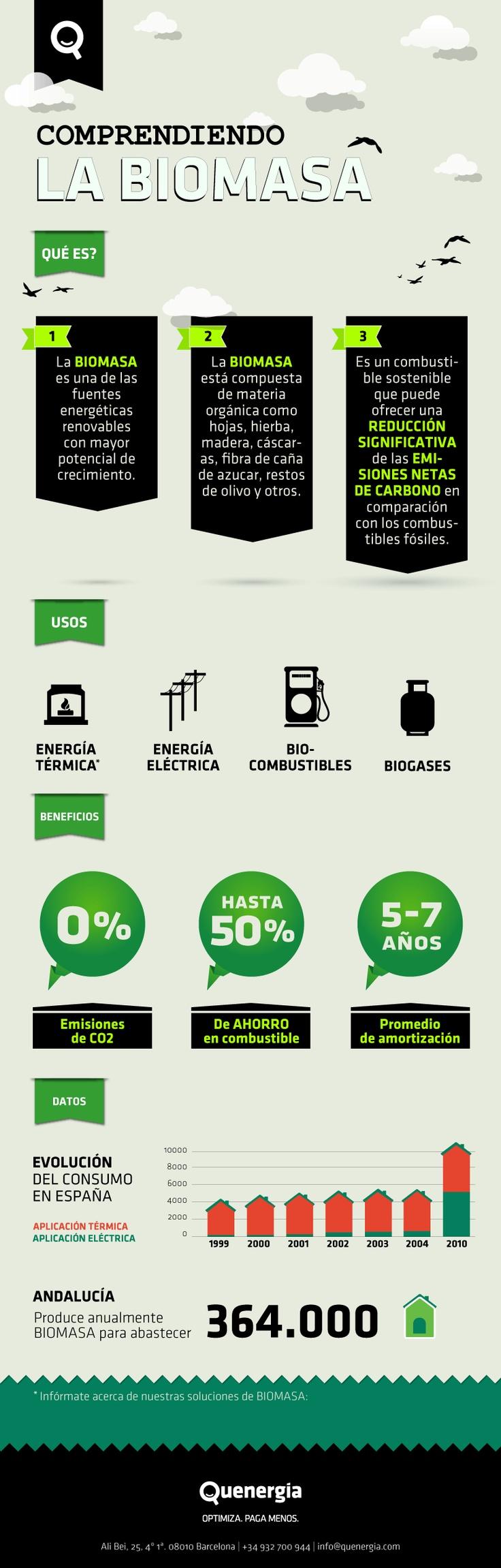 ¿Te has preguntado que es la Biomasa y como gener energía a través de ella? Esta infografía te podrá ser de mucha utilidad.