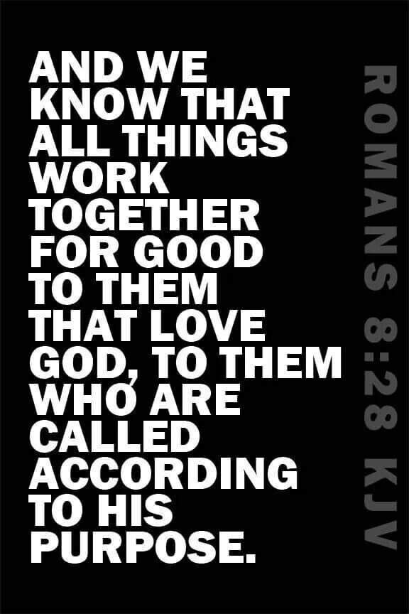 Romans 8:28 KJV