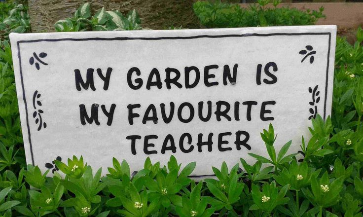 """My Garden is My Favourite Teacher"" displayed in my garden with a plastic plate stand (easel). Ask me about a custom order!"