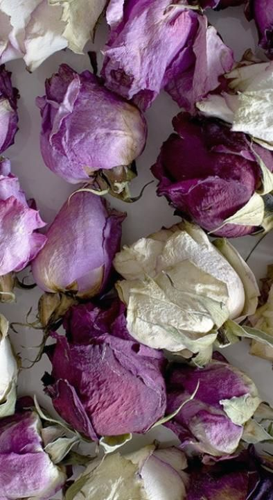 2014 Pantone Colour Trend: Radiant Orchid / Wedding Style Inspiration / LANE (instagram: the_lane)