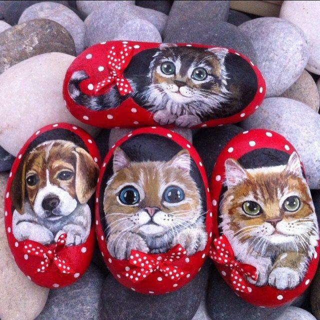 Ayakkabınızı giyerken dikkat edin içinden bir kedi çıkabilir❤️#kedi #köpek…