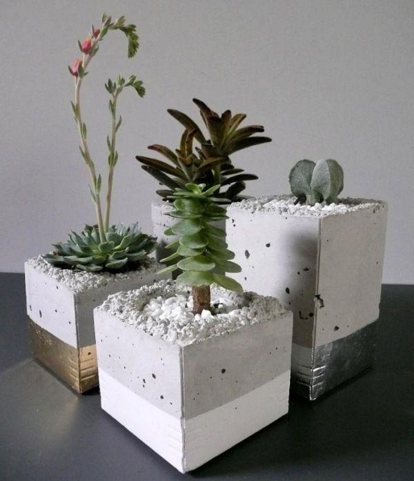 idée déco avec des conteneurs en béton pour vos plantes succulentes