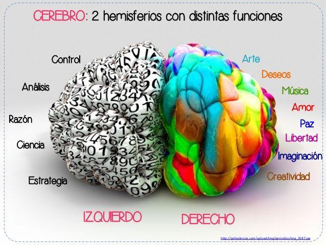 Aprovechamos de traerte esta breve explicación sobre las funciones de cada hemisferio cerebral. Síguenos en Twitter: http://www.twitter.com/gymcerebral #gimnasia #mental #ejercicios #cerebrales                                                                                                                                                      Más