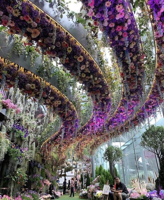 76886a9f579aed4233c170d98ace384a - Rob Lake Gardens By The Bay