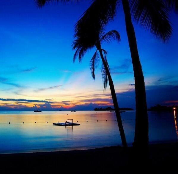 Stunning #Jamaica. A must see!  #MontegoBay #Travel.