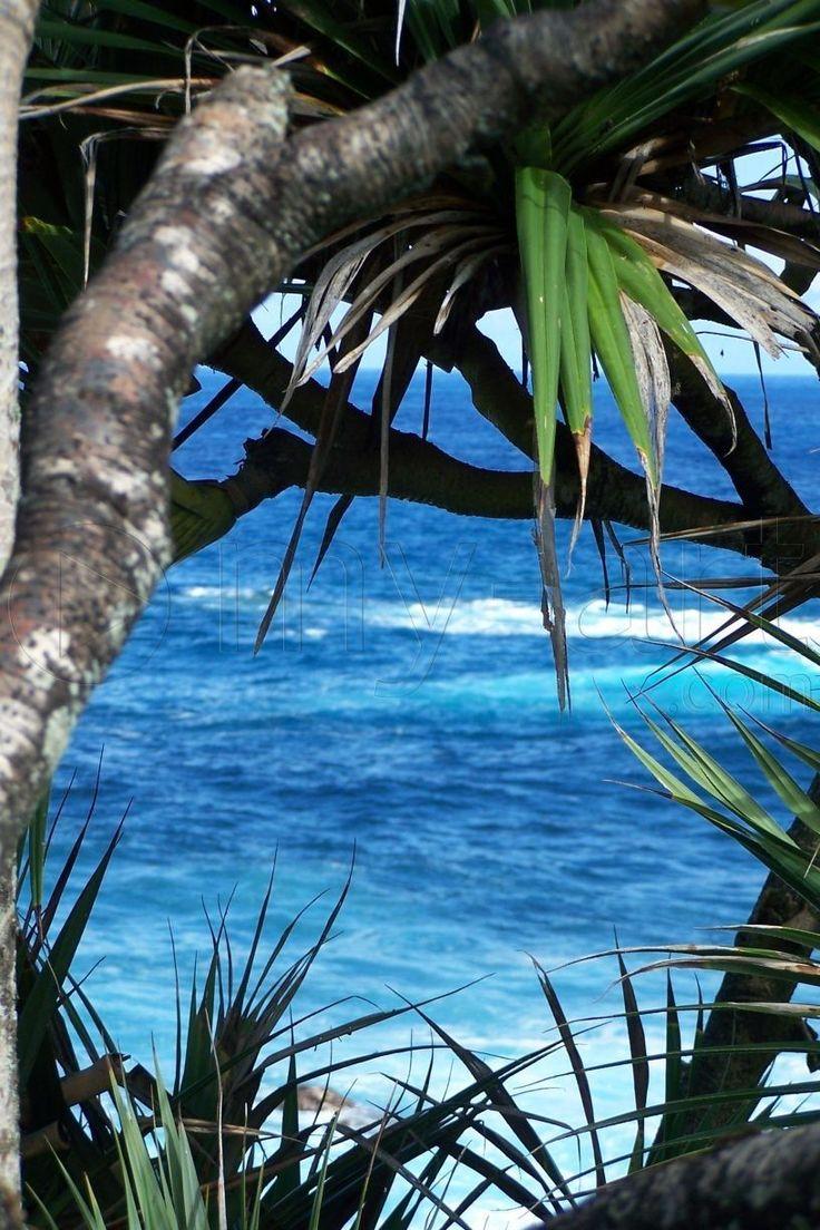 Saint Philippe - Ile de la Réunion