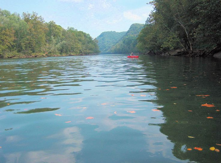 27 best images about next vacation on pinterest for Fly fishing kentucky