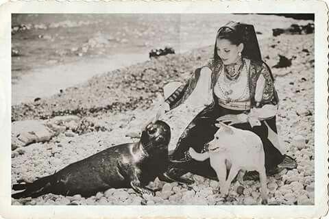 Foto del 1957 - Foca monaca nelle spiagge di Baunei