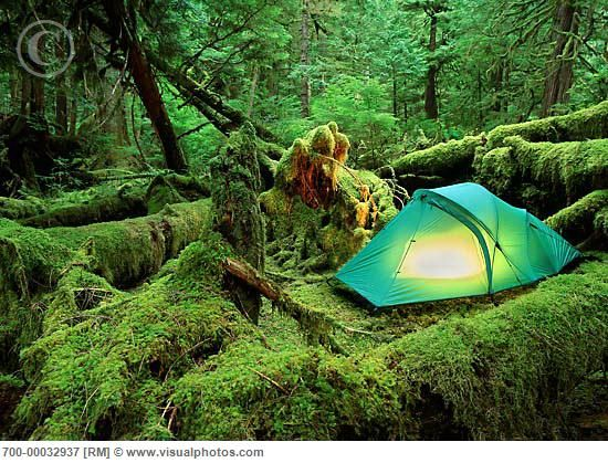 C&ing Queen Charlotte Islands British Columbia Canada & 34 best Camping in BC images on Pinterest | British columbia ...